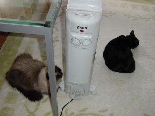 Oil Heater.jpg